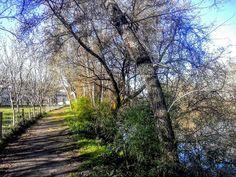 Uma caminhada na Ecovia de Arcos de no percurso a Sul. Partindo do Campo da Feira e indo até Santar percorrendo sempre as margens do Vez e depois as do rio Lima. Um dos percursos mais românticos da Ecovia.