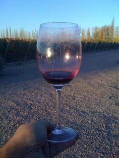 GOULART GRAN VIN MENDOZA ARGENTINA WINE