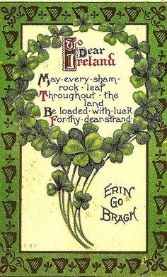 Irish <3