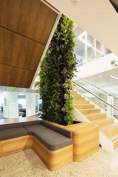 Abbvie Pharmaceuticals – by Vertikal. Extraordinary vertical gardens for inspiring design projects. www.vertikal.com.au