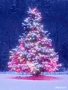 Christmas Tree GIF - ChristmasTree - Discover & Share GIFs