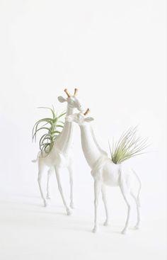 animal planter pair