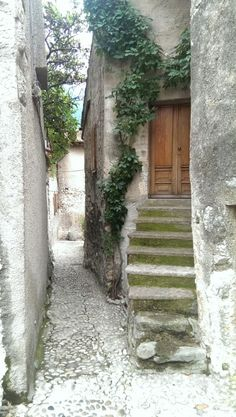 Malcesine Gardasee Lake Garda, Verona, Bella, Photos, I Love, Italia, Vacation Places, Vacation Travel, Beautiful Places