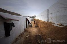 レバノンのシリア難民、100万人を超える 国連 国際ニュース:AFPBB News     /  レバノン・ベカー渓谷(Bekaa Valley)の町アルサル(Arsal)に設置されたシリア難民キャンプ(2014年3月28日撮影)。(c)AFP/JOSEPH EID Syrian Children, Dogs, Animals, Outdoor, Outdoors, Animales, Animaux, Pet Dogs, Doggies