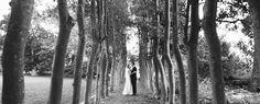 garden-wedding1.jpg (900×364)