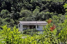 Ter uma casinha branca De varanda Um quintal e uma janela Para ver o sol nascer…,