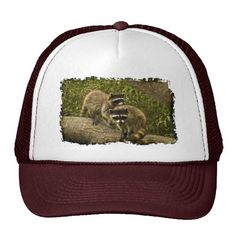 Raccoons Mesh Hat by Florals by Fred #zazzle #gift #photogift
