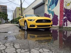 The 2015 Ford Mustang GT 50th anniversary pictured in downtown Fort Lauderdale.