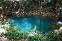 """Bowling Green, Kentucky Blue Hole, Pictured above is what's known as a """"blue hole,"""" or an underwater sinkhole, located in the Lost River Cave and Valley of Bowling Green, Ky. The result of an underground, dissolved limestone drainage system that rests beneath the region, the blue hole is surrounded by local myths of swimmers disappearing below its murky, stagnant surface, never to return."""