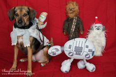 Jedi Luna Strikes Back | http://www.beaglesandbargains.com/jedi-luna-strikes-back/