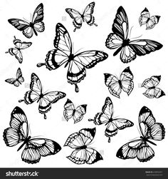 Butterflies Design – # – Butterflies Design – # – … - Famous Last Words Butterfly Illustration, Butterfly Drawing, Butterfly Tattoo Designs, Mandala Drawing, Butterfly Design, Body Art Tattoos, Small Tattoos, Insect Coloring Pages, Borboleta Tattoo
