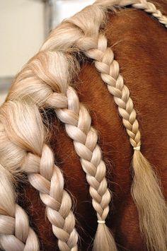 #Horse #mane #braids www.flickr.com/photos/knottynaomi/5442784095/in/faves-rawfishdesigns/