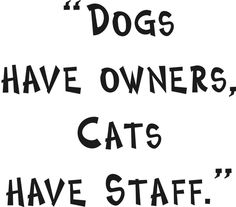 Dog quotes!