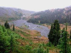 Indian Bar-Cowlitz Divide — Mt. Rainier National Park. Washington Trails Association