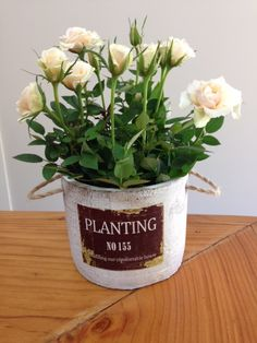 'Full Bloom' planting pot  *new range* the 1st in our new series of contemporary designs! cement planting pot with rustic finish that perfectly complements your choice of flowering roses, fuchsias, exacum, cyclamen or lush green foliage ferns! http://www.summerhillnurseries.com.au/www/content/default.aspx?cid=1806&fid=670