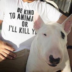 Camiseta BE KIND TO ANIMALS OR I'LL KILL YOU. Disponível em diversos modelos e cores no nosso site! Este produto tem o selo #SHARKSAVE com parte do lucro revertido para cães, gatos e abrigos pelo Brasil!