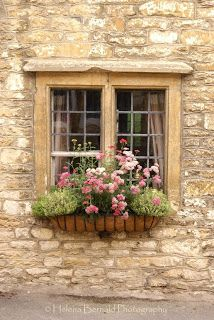 I want flower beds hanging out of my windows!