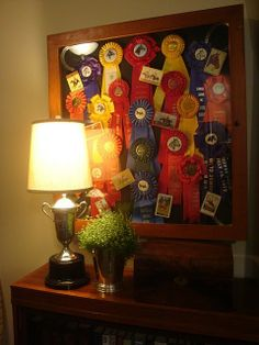 Equestrian ribbons won by my horsey daughter.  I think this is a lovely way to remember her successes.    Hallway framed ribbons.