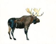 MOOSE Original watercolor painting