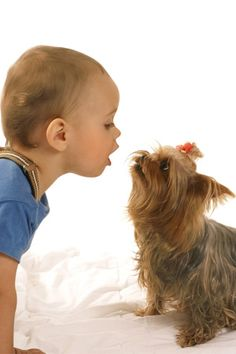 """If you already have a four-legged """"furbaby"""" at home, use these tips to prepare your dog for life with an infant."""