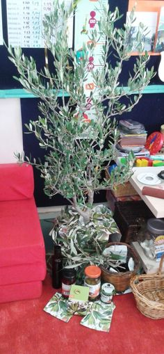 20141120_131410 Gift Wrapping, Table Decorations, Gifts, Eid, Furniture, Autumn, Home Decor, Olive Tree, Paper Wrapping
