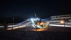 Miron Bococi - Horse show at Turda Show Horses, Utility Pole, Inspiration, Biblical Inspiration, Race Horses, Inspirational, Inhalation