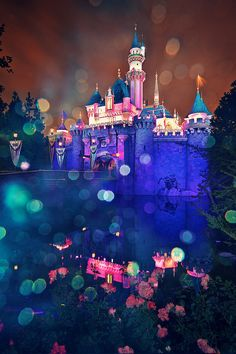 sleeping beauty's castle. Every girl is a princess and I believe I belong in a castle. I love Disney movies.