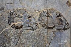bas-relief-of-sheep-at-persepolis-in-iran-robert-preston.jpg (900×600)