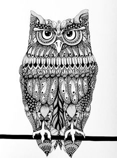 Owl Illustration - Micron pens on Crescent illustration board - by Monica Moody