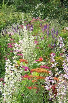 I love when the garden is that full of flowers.  Who wants to look at soil?