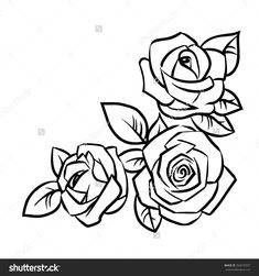 roses three background leaves shutterstock vector rose outline drawing simple easy drawings flower basic tattoo illustration