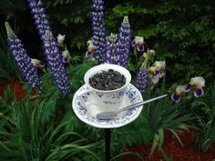 DIY Tutorial:  Staked Tea Cup Bird Feeder {with a sweet little spoon perch}.  Water in the cup and seed on the saucer, perhaps?
