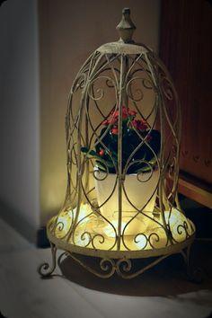Homedecor, waiting fot Christmas, Joulun odotusta,punainen tulilatva, red flower, kalanchoe blossfeldiana