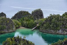 Detail of Pianemo, Raja Ampat - one of 4 things to see before you die #Indonesia
