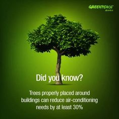 #DidYouKnow: Trees planted around buildings can reduce air-conditioning needs by up to 30%---great for hot weather like we're having now. #summer #beattheheat | Via @Greenpeace USA