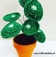 Kijk wat ik gevonden heb op Freubelweb.nl: een gratis haakpatroon van Het Haakatelier om deze leuke pilea pannenkoek plant te maken https://www.freubelweb.nl/freubel-zelf/gratis-haakpatroon-pilea-pannenkoekplant/