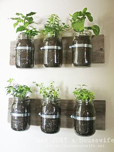 Love this rustic Mason Jar Wall Planter! Learn how to make it here: http://www.ivillage.com/diy-mason-jar-crafts/7-a-544904