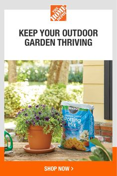 Enhance your garden with The Home Depot. We have the plants and plant care products to make this year's garden the best one yet. Plus, give mom the perfect Mother's Day gift — gardening supplies she'll love. Tap to browse a wide range of plant foods, planters and more at The Home Depot. Gardening Supplies, Gardening Tips, French Tip Nail Designs, Healthy Filling Snacks, Perfect Mother's Day Gift, Garden Club, Plant Care, 3rd Birthday, Planters