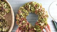 Bind autumn wreath of hydrangeas by yourself- Herbstkranz aus Hortensien selber binden Whether as a door wreath or as a table decoration a hydrangea wreath … - Green Hydrangea, Hydrangea Wreath, Hydrangeas, Floral Wreath, Autumn Wreaths, Easter Wreaths, Diy Wreath, Door Wreaths, Grapevine Wreath