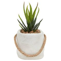 If you're after realistic, low maintenance plants, you will love our artificial plants and flowers. Discover our amazing range at Spotlight and grab a bargain! Bouclair, Cactus, Artificial Flowers And Plants, Stylish Home Decor, Window Coverings, Home Decor Items, Potted Plants, Decoration, Furniture Decor