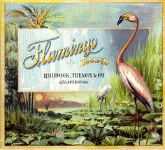 Flamingo Fruit Crate Label Art Prints