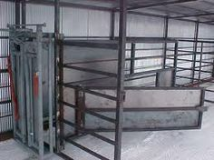 calving.barn ideas - Google Search
