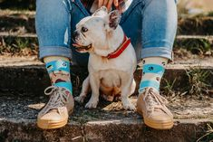 Good Mood socks are designed to bring joy and fun to everyday life. The ultimate gift for all your family and friends. Wear Good Mood socks and spread your Good Mood! The Ultimate Gift, All About Eyes, Good Mood, Dog Cat, Bring It On, Socks, Stripes, Cats, Fun