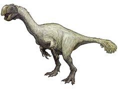 GIGANTORAPTOR | Gigantoraptor elrianensis