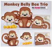Monkey Belly Box Trio