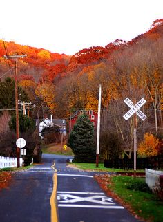 One of these days, I want to drive through New England during the fall color season... stunning.