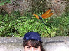Dragonfly Hat on my Head