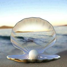 PATIENCE ~ It takes time for a grain of sand to transform into a pearl. ~ ALW