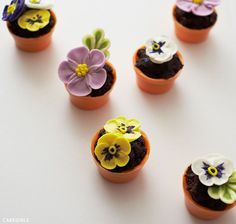 Learn how to make these tiny flower pot cakes in seven simple steps. No baking required! A cake project with a step-by-step tutorial. Created by Cakegirls for The Cake Blog.