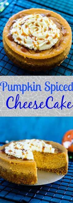 The best ever Spiced Pumpkin Cheesecake recipe for upcoming holiday season. Pumpkin Cheesecake Recipes, Pumpkin Recipes, Cheesecake Bars, Halloween Desserts, Halloween Parties, Spiced Pumpkin, Pumpkin Spice, Pastel, Cupcakes